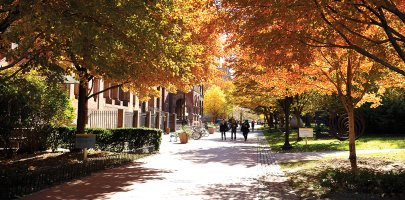 Visit the Pratt Institute